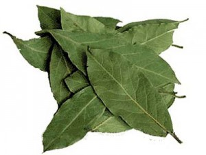 Лосьон из лаврового листа очистит кожу от прыщиков и пигментных пятен