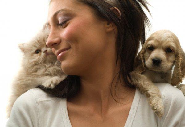 Аллергические реакции на животных