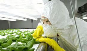 ООН: химикаты продуктах химикаты приводят к раку