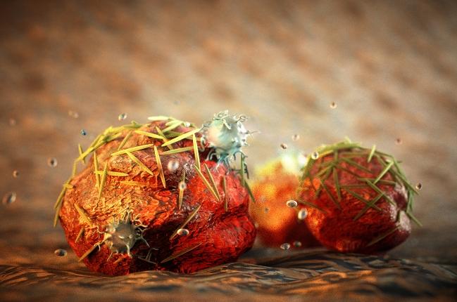 Изменение формы наночастиц препаратов совершенствует лечение рака