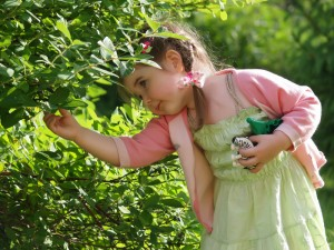 Развитие ребенка. Дети и огрод