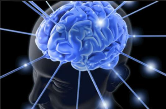 Изучение человеческого мозга в США