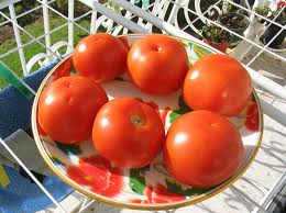 Соя и томаты могут предотвратить возникновение рака простаты