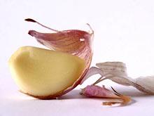 Свежий чеснок предотвращает развитие рака легких