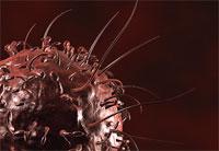 Австралийские ученые утверждают, что обуздали рак