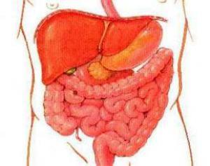 Нелеченный гастрит угрожает развитием опухоли