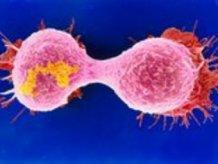 Российские ученые выпустили вакцину от рака, продлевающую жизнь больному в два раза