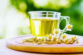 Ромашковый чай спасет от диабета