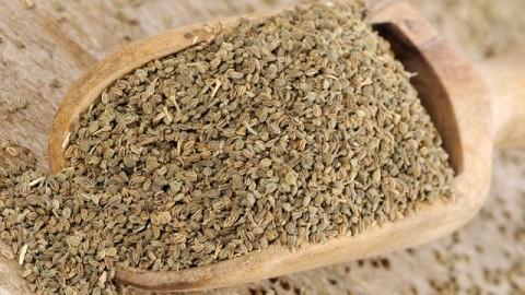 Состояние во время месячных помогут улучшить кислица и семена сельдерея