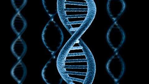 Как рак меняет ДНК выяснили учёные