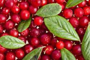 Кислые продукты увеличивают вероятность развития диабета 2 типа