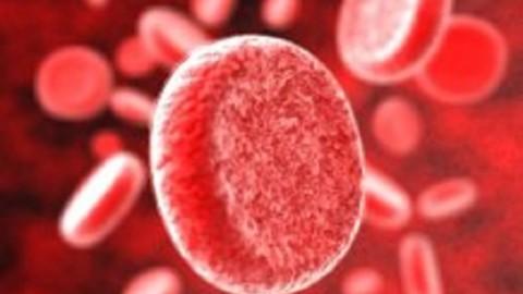 Названы группы крови, обладательницы которых более склонны к развитию диабета