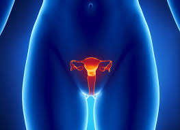Эрозия шейки матки: причины, лечение и его последствия