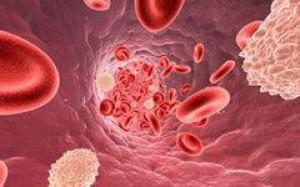 Злоупотребление алкоголем может вызывать семь видов рака