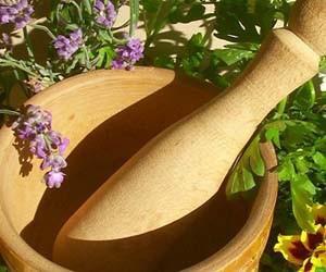Лечение токсоплазмоза травяными сборами