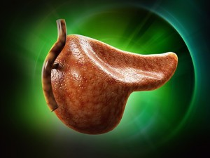 Избавление всего от 1 грамма жира в поджелудочной железе улучшит состояние диабетиков