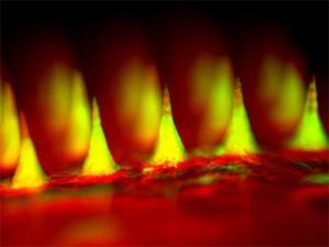 Разработан пластырь для лечения меланомы