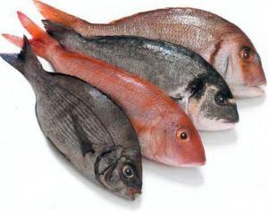 Рыба защищает мужчин от рака простаты?
