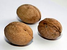 Орехи снижают риск смерти от рака простаты