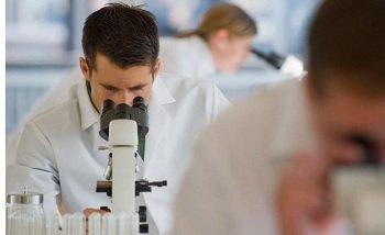 Одобрены эксперименты с участием раковых больных