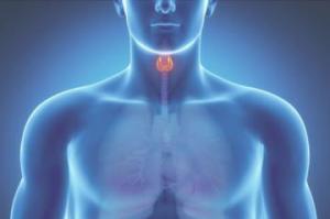 Как на нас влияют нарушения работы щитовидной железы