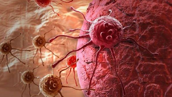 Рак питается не только глюкозой